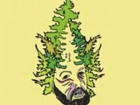Modernstate - burning beard