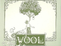 Nick Jaina- wool
